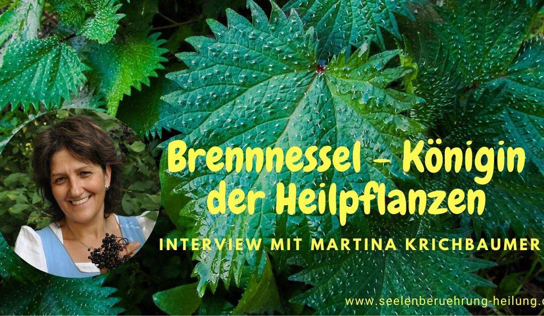 HFS_64 Brennnessel – Königin der Heilpflanzen
